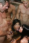 Steaming sweaty brunettes in nylons have a groupsex with well-hung stallions