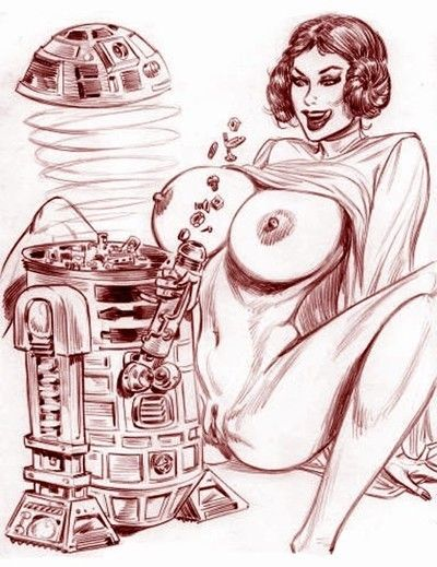 Star wars porn toons