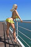 Appealing 3d bikini fairy hottie shows her giant front bumpers on the pier