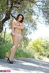 Jodie Gasson strips on the old country road.