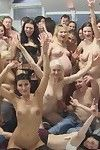 Large amateur orgy pics