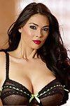 Brunette MILF pornstar Tera Patrick in sheer lingerie unveiling huge breasts